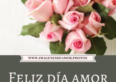 feliz dia mi amor