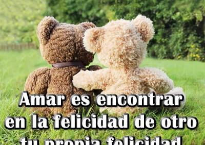 imagen-felicidad-osos-amor