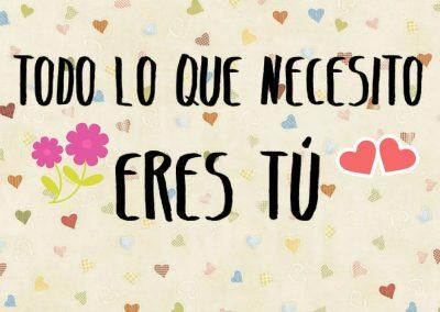 todo lo que necesito eres tu