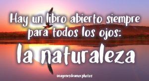 frases sobre naturaleza
