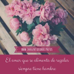 imágenes con flores
