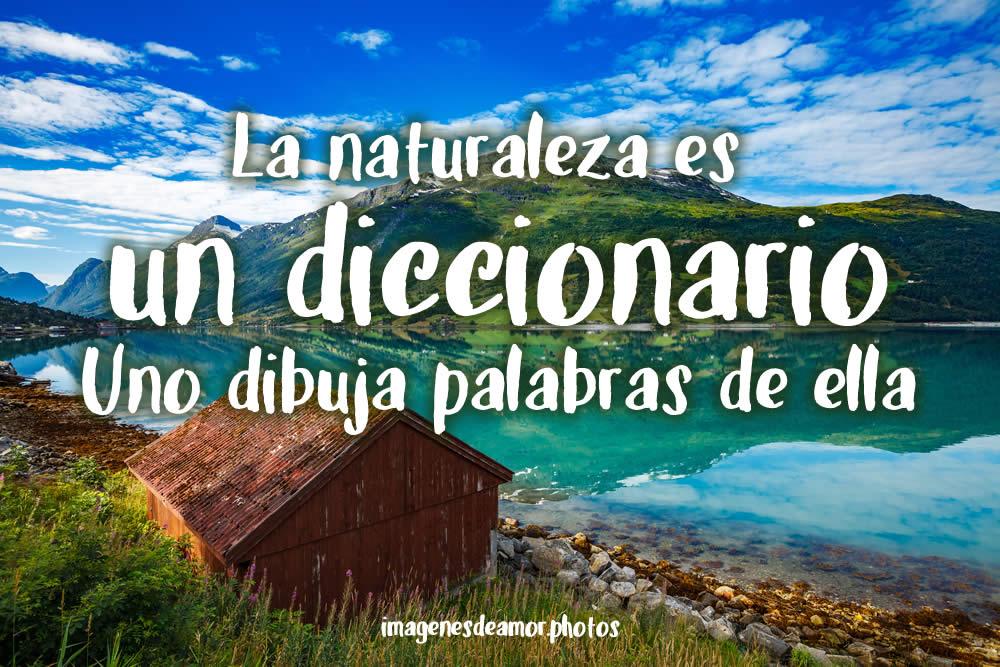 Imágenes De Paisajes Y Naturaleza Fotos Con Frases Bonitas