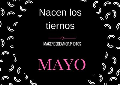 frases de mayo